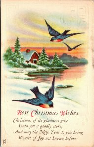 Best Christmas Wishes - Winter Scene - Lake BIRD - POSTCARD PC POSTED for health
