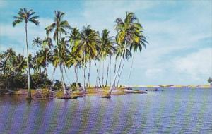 Singapore Bedok Beach