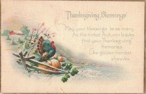 Circa 1907-15 Thanksgiving Blessings Turkey Pumpkins Split Rail Fence Postcard
