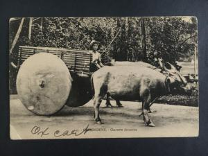 Mint Vietnam Indochina RPPC Real Picture Postcard  Ox Cart with Farmer
