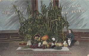 OAKLAND , Maryland , 1911 ; Farm Products Exhibit , E.S. West Real Estate Office