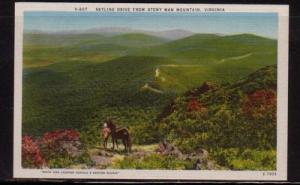 Virginia postcard Skyline Drive Stony Man Mountain