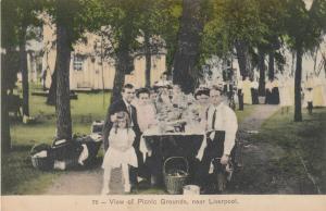 LIVERPOOL , Pennsylvania , PU-1908 ;  View of Picnic Grounds