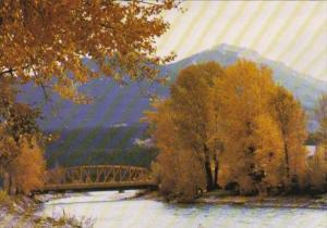 Canada Kicking Horse River At Golden British Columbia