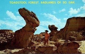 South Dakota Black Hills Toadstool Forest