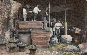 MADEIRA, Portugal, 1900-10s; Lagar de fazee vinho