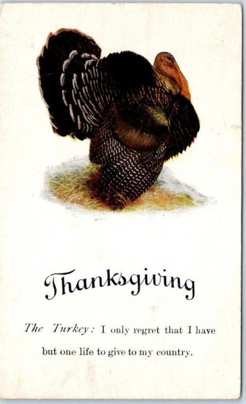 1910s THANKSGIVING Postcard Turkey: I Regret That I Have But One Life to Give
