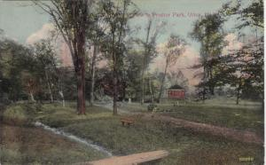 UTICA, New York, 1900-1910's; View In Proctor Park