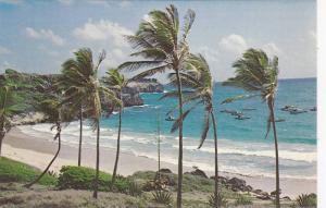 DC3 South Coast Beach, Barbados, West Indies, 1950-1960s