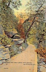 WILMINGTON DE~BRANDYWINE PARK WALK ABPVE WIREBRIDGE~1911 PSTMK POSTCARD