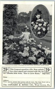 Vintage CONARD & JONES ROSES Advertising Postcard Catalog Request Form