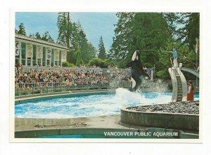 KIller Whale Show, Vancouver Public Aquarium, Canada, 1950-70s