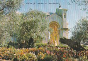Israel Jerusalem Garden of Gethsemane