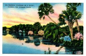 FL - Tropical Splendor on a Bayou