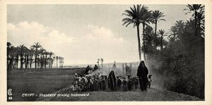 Vintage Egypt Postcard, Shepherd Driving Homeward Panoramic Bookmark Style BF2