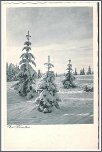 Liechtenstein Drei Schwestern Winter Scene Postcard