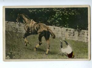 187294 HORSE RACE Falling Rider Vintage tinted PHOTO PC