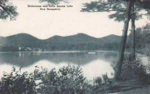 New Hampshire Holderness And Little Squam Lake Albertype