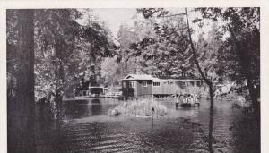 Swimming Pool,  Sequoia Gardens, near Santa Cruz,  California,  40-60s