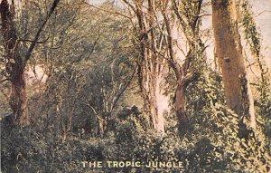 The Tropic Jungle Africa, Afrika Unused
