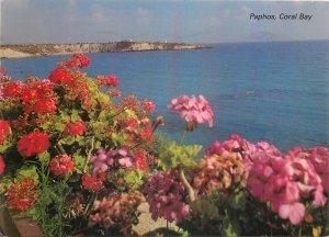 Postcard Cyprus paphos coral bay flowers sea-side cliff landscape