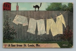 1911 Scared Cat on Fence Comical St Louis MO Missouri Postcard
