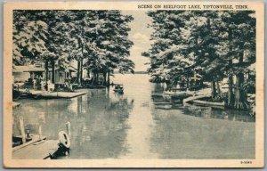 Tiptonville, Tennessee Postcard Scene on REELFOOT LAKE Curteich / 1940 Cancel