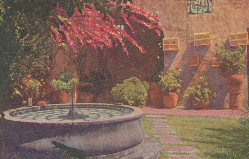 Fuente Pajaros Y Flores Antique Mexico Painting Postcard