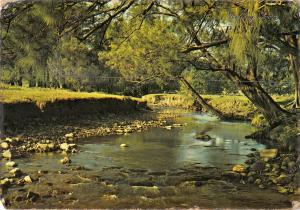 BR101962 countryside   australia