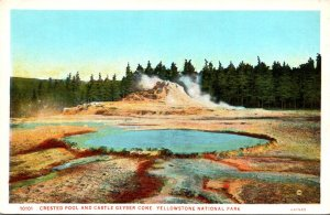 Yellowstone National Park Crested Pool and Castle Geyser Cone Haynes Photo