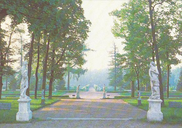 Russia Pushkin Main Avenue Of The Old Garden Catherine Park