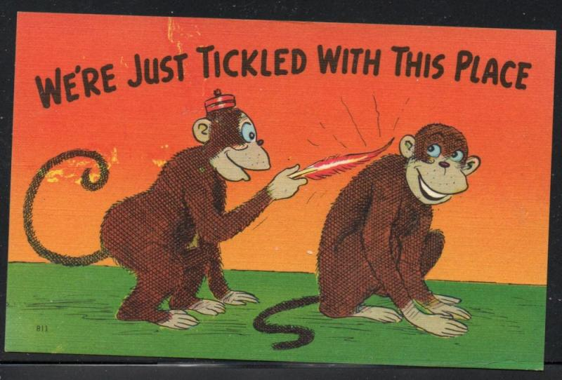 Humour colour PC We're Just Tickled with This Place Monkeys