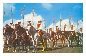 Mounted Police, Barbados, W.I., 40-60s
