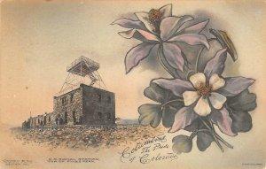 US Signal Station, Pikes Peak, CO Columbine Flowers c1910s Hand-Colored Postcard