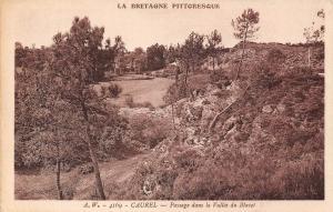 France La Bretagne Pittoresque Caurel Paysage dans la Vallee du Blavet