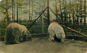 OH, Toledo, Ohio, Walbridge Park, Bears