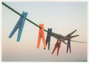 Rainbow LGBT Coloured Pegs On Washing Line Postcard