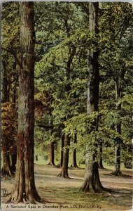 Louisville KY Cherokee Park c1908 Tuck Postcard G26
