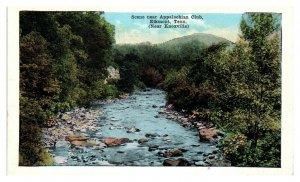 Scene near Appalachian Club, Elkmont, TN Postcard *5N(2)14