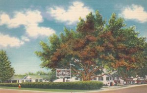 ST PETERSBURG, Florida, 1930-40s; Shady Nook Cottages