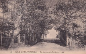 Saint Quay Portrieux Chemin De La Comlesse Antique Postcard