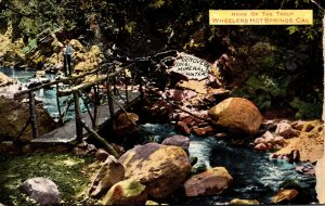 California Wheelers Hot Springs Home Of The Trout 1910