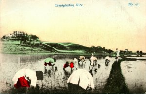 Vtg Postcard 1910s Rural China - Transplanting Rice - S.S. Picture Pub UNP
