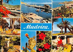 Portugal Madeira The best views of Madeira multiviews Harbour Port General view