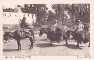 Kids on Donkey , Retour a l'Oasis, 1910s; Algeria