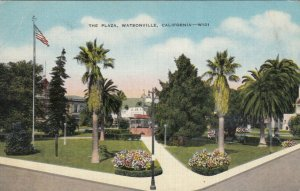 WATSONVILLE , California , 30-40s ;  The Plaza