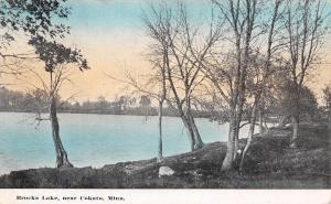 Cokato Minnesota~The Blue Waters of Brocks Lake @ Sunrise Postcard 1911