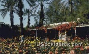 Palm Springs, California, Postcard       ;       Palm Springs, CA Post Card