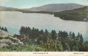 Lake Sunapee New Hampshire~Handcolored Rural Scene~c1915 Frank Swallow Postcard