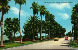 Florida Dundedin Edgewater Drive 1960